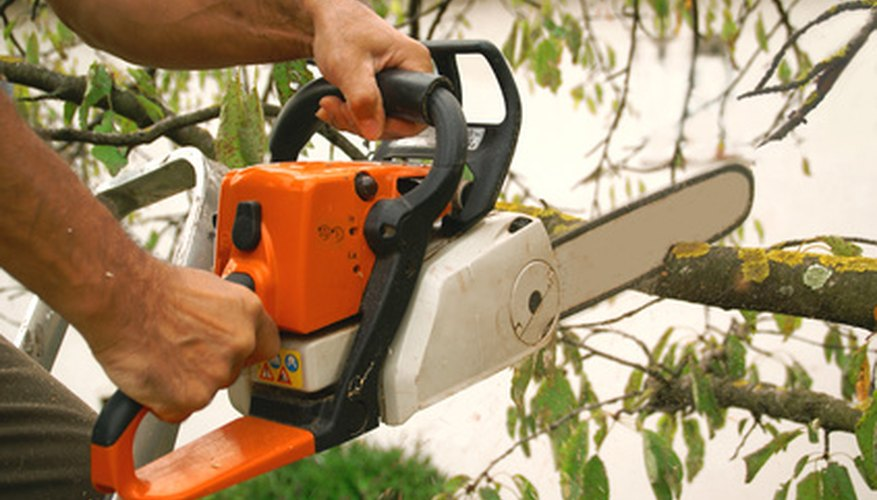 Use safety when cutting trees with chain saws.