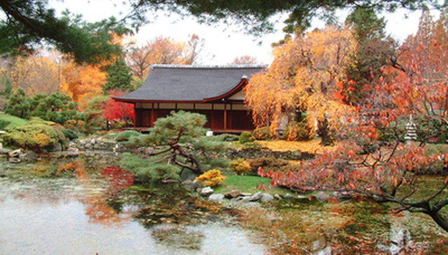 A Japanese garden in fall: some astilbes originated in Japan
