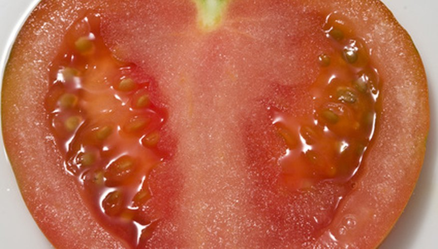 Tomato seeds must be properly prepared before they are stored.