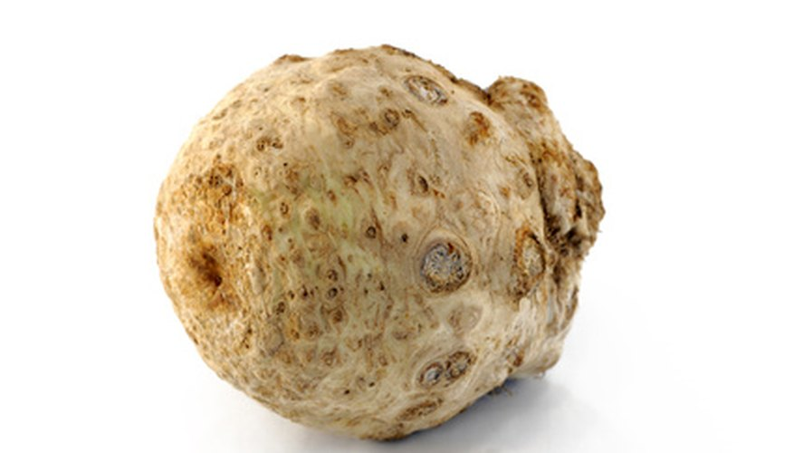 Celery root is also known as celeriac.