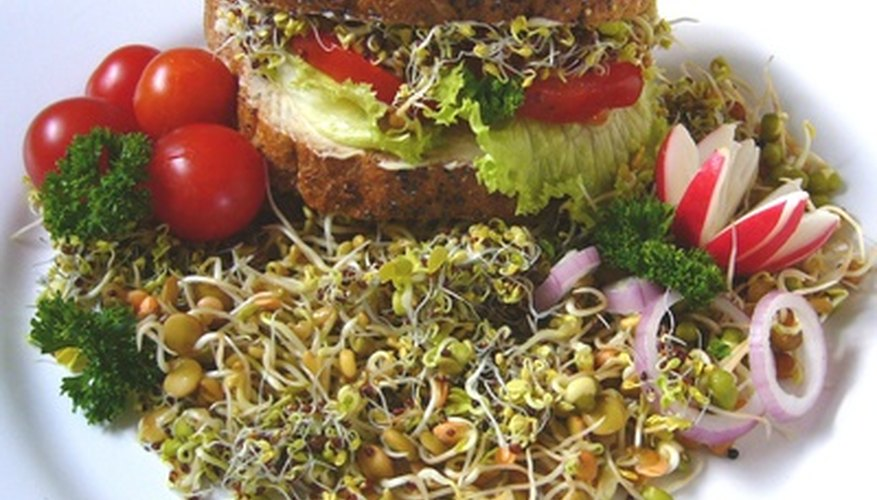 Sprouts on a sandwich
