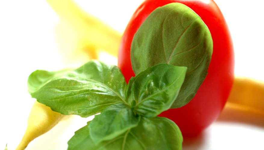 Tomatoes and basil have some benefits when planted together.