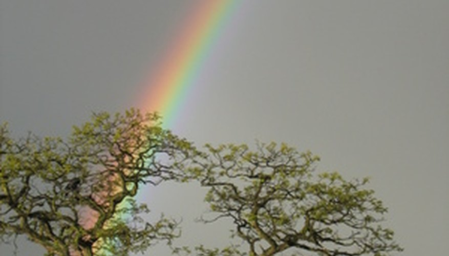 Haz un arco iris para los estudiantes.