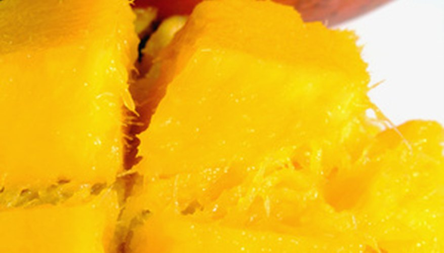 Mango trees can be grown in selected areas of south Florida