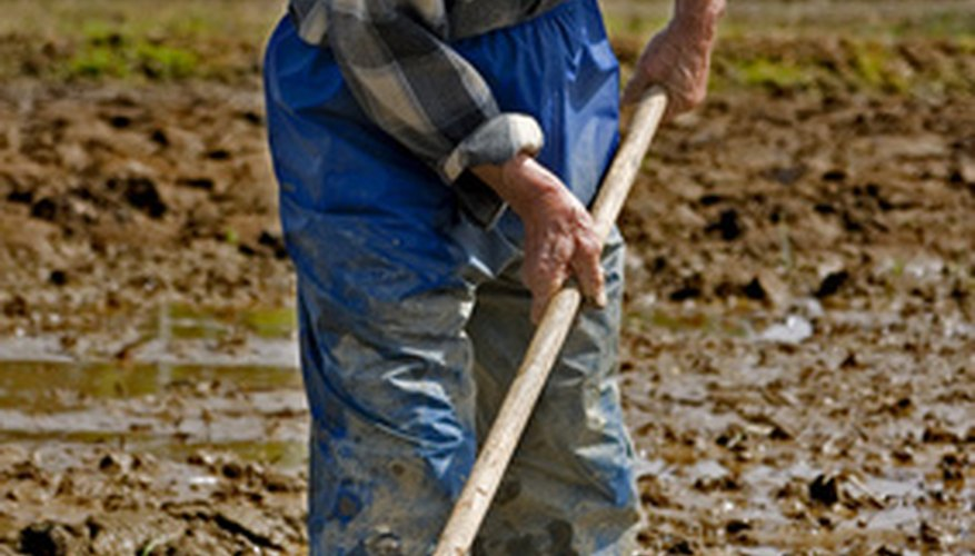 Sharpen a garden hoe to keep it working effectively.
