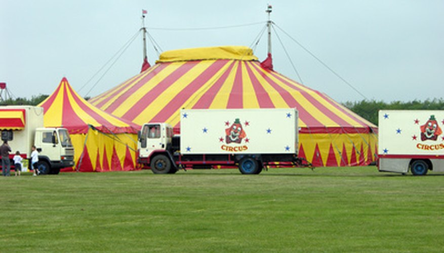 Clowns may be circus clowns or rodeo clowns.