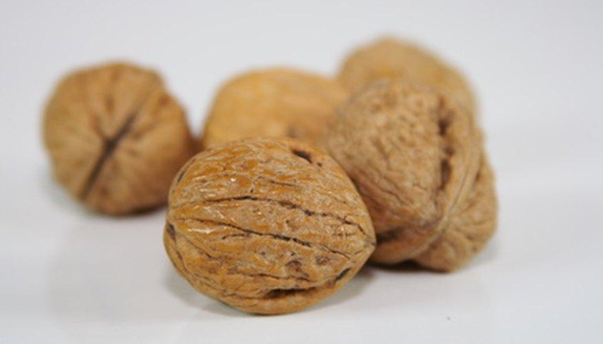 Identifying Walnut Trees | Garden Guides