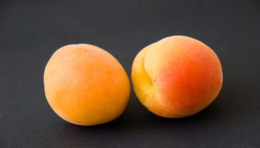 Healthy apricots come from properly maintained trees.