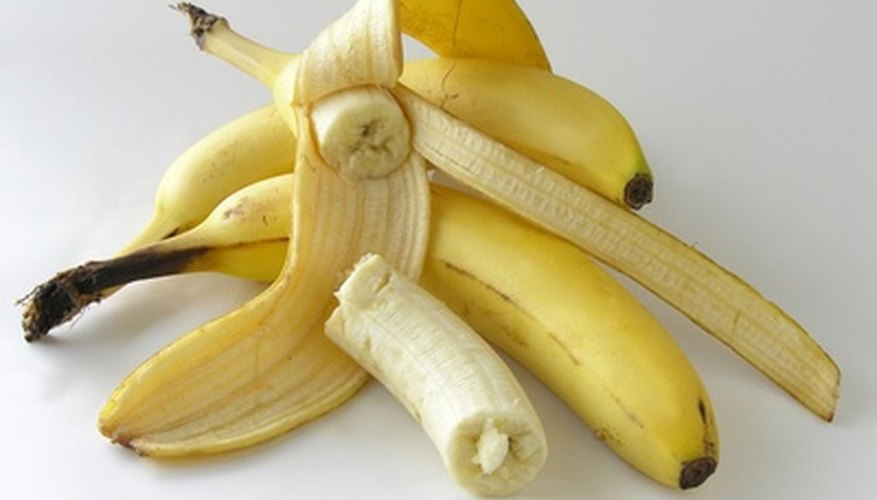 Plantain bananas are typically cooked before eating.