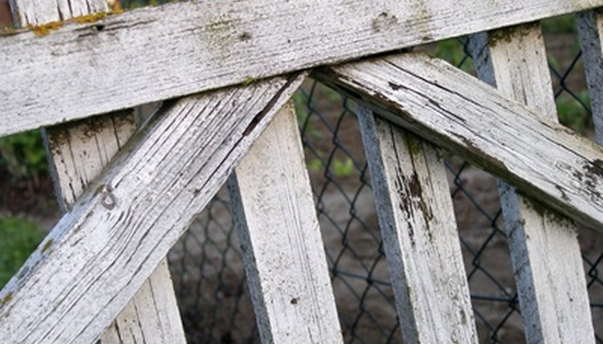Garden fences help keep unwelcome animals away.