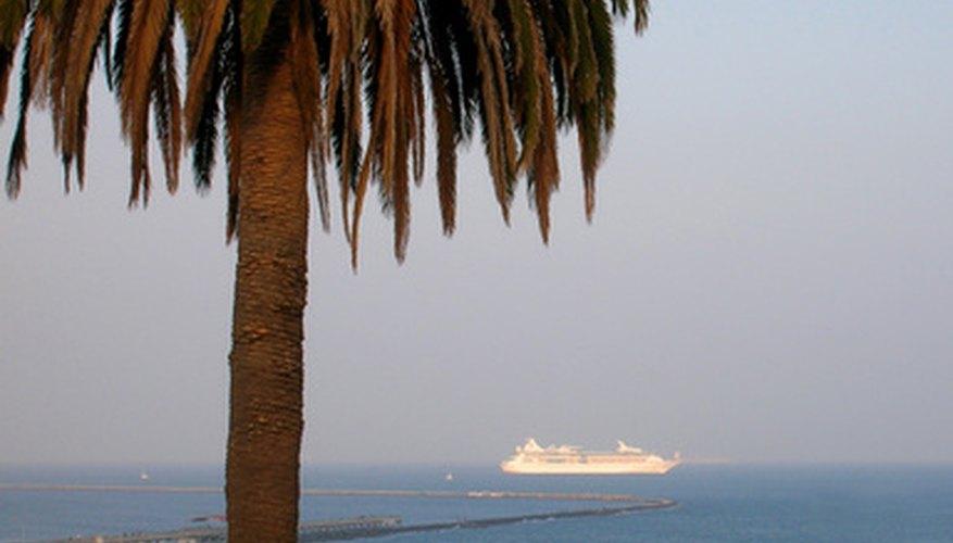 Los cruceros de un día a las Bahamas salen todos los días de los puertos de la zona de Miami.