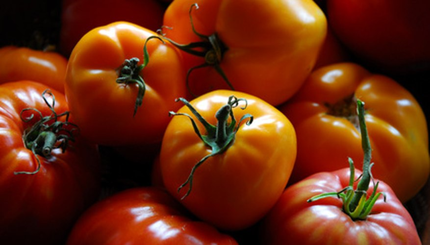 Determinate tomatoes produce large single harvests.