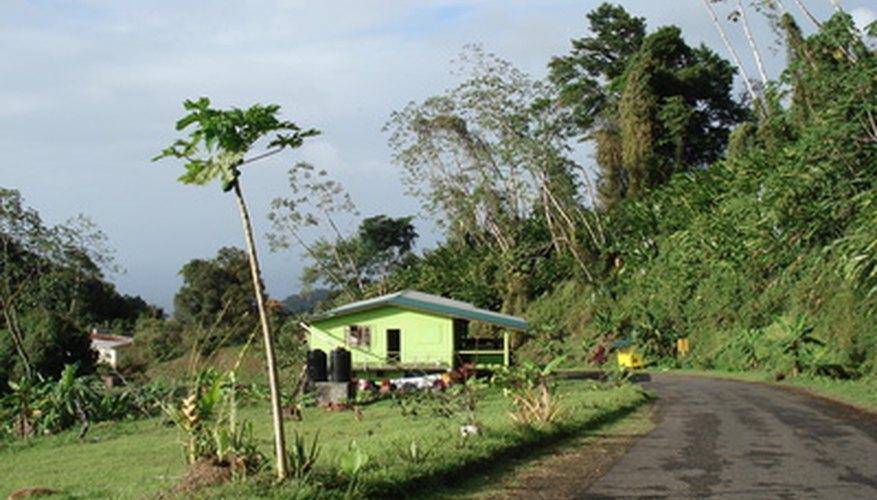 Los orígenes de la música soca se pueden encontrar en Trinidad y Tobago.