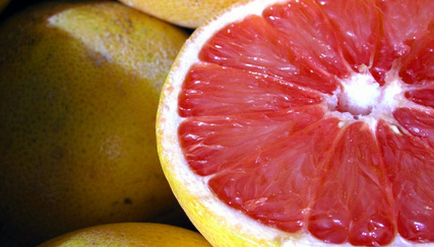 Healthy grapefruit grown organically