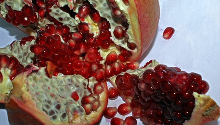 Pomegranate trees date back over 2,000 years.