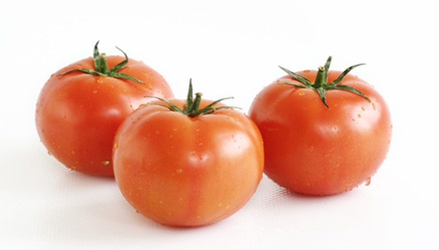 Vegetables such as tomatoes can grow in hydroponics labs.