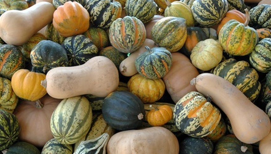 Remove mold from dried gourds by scrubbing them.