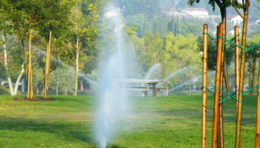 Sprinkler systems are used for home gardens and commercial crops.