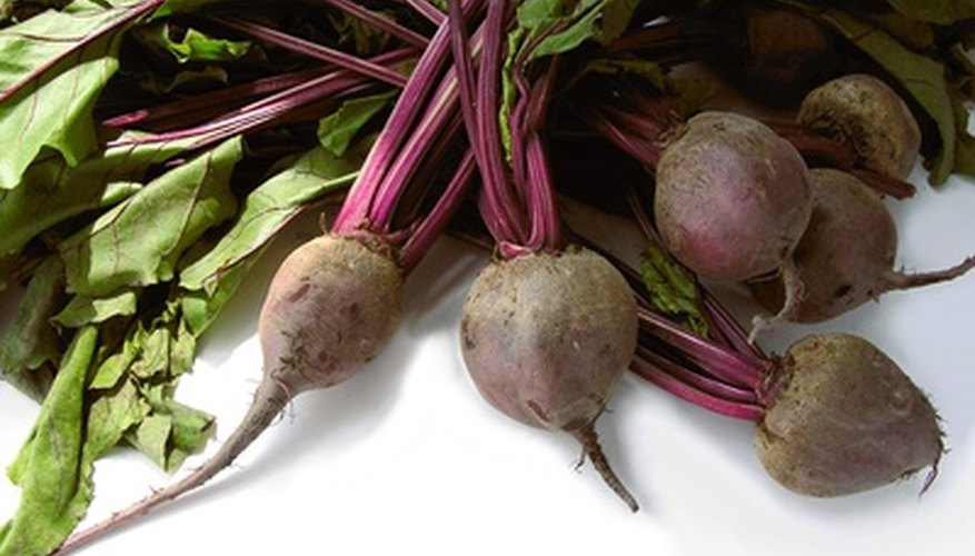 The leaves of beets provide beet greens, while the swollen root is used as side dish or to make pickled beets.