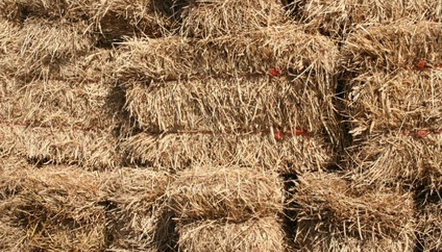 Square bales of straw make an easy to assemble cold frame.