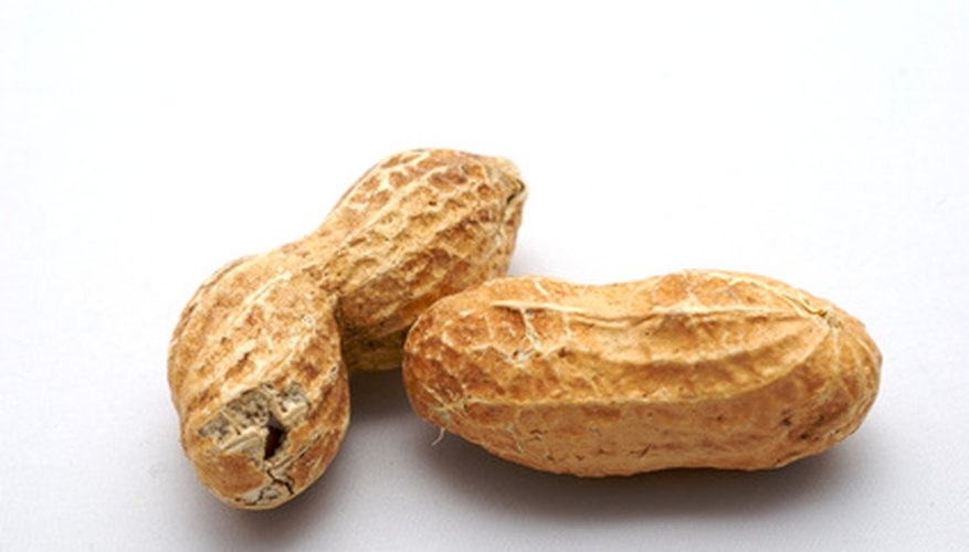 Grow peanuts in your Missouri garden.