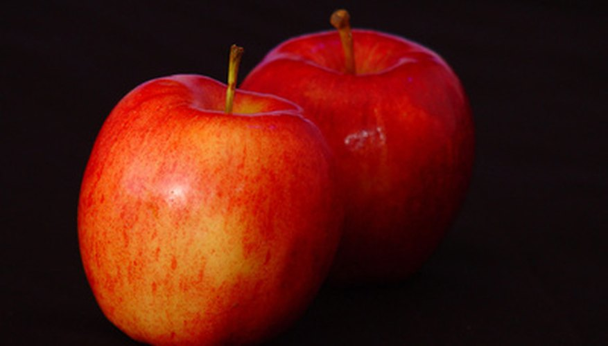 Iowa's Gala apples are harvested in early September.
