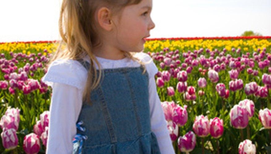 Saber la diferencia entre seres vivos y objetos sin vida ayuda a los niños a tomar conciencia del mundo a su alrededor.