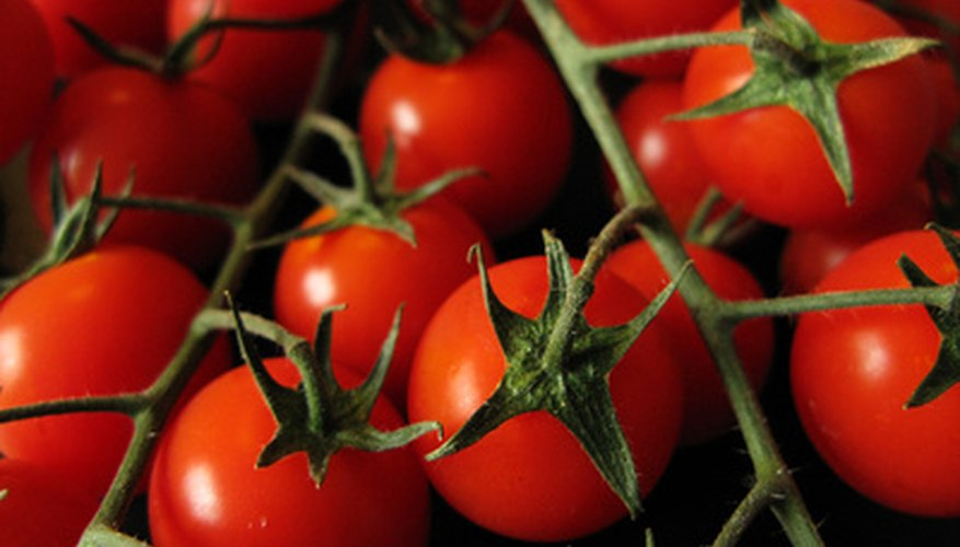 Extend your growing season with greenhouse tomatoes.