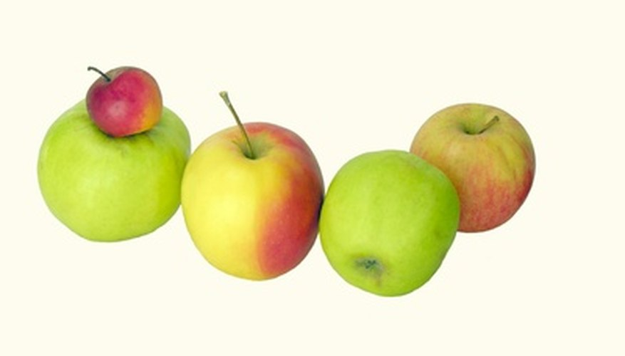 Apples create ethylene gas which speeds the ripening of other fruits.