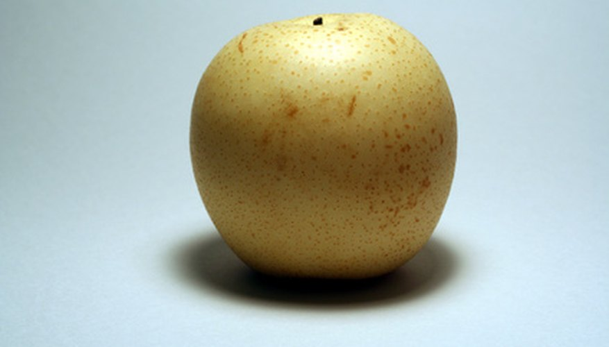 Asian pear trees combine the crisp texture of an apple with the sweet, fragrant flavor of a pear.