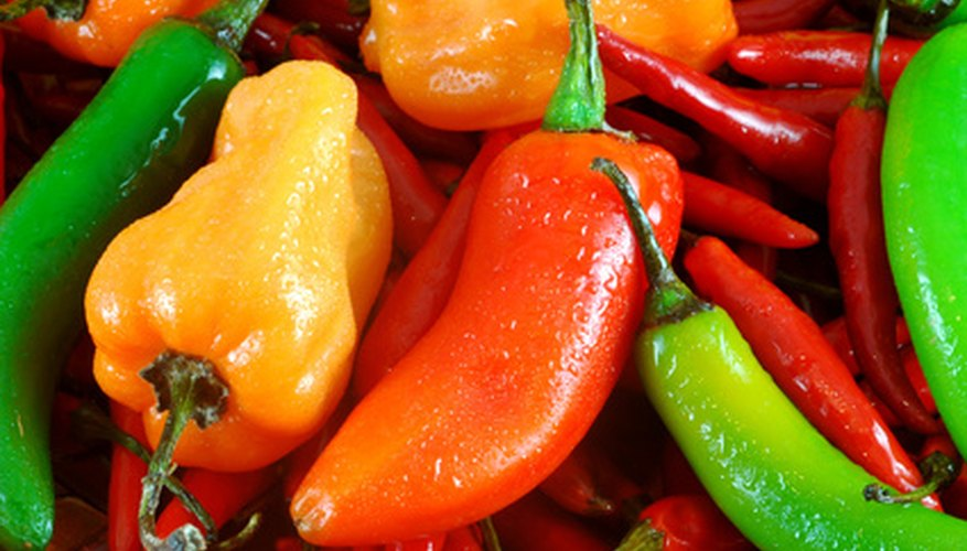 The capsaicin in hot peppers is a useful ingredient in sprays that repel insects.