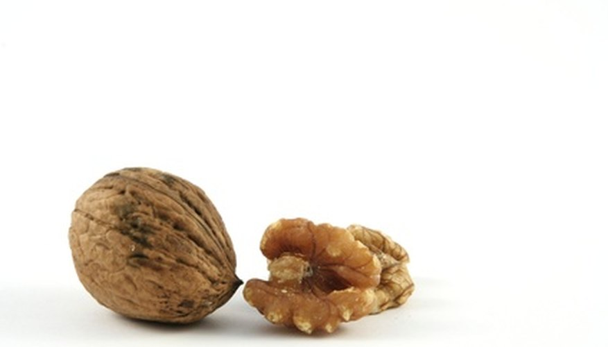 Walnuts make tasty snacks.