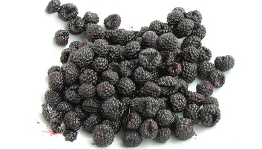 Black raspberries.