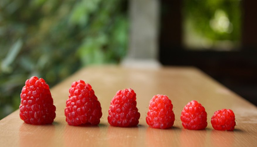 Raspberries vary in size.