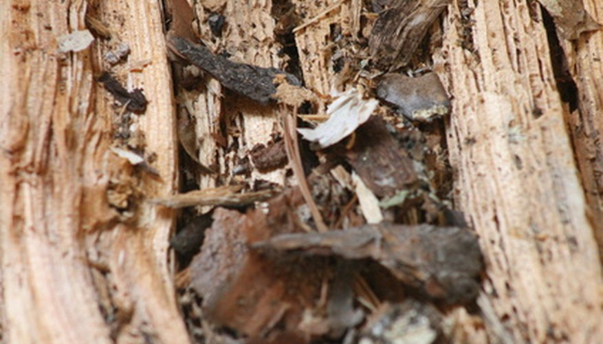Wood decays more slowly than other compost materials.