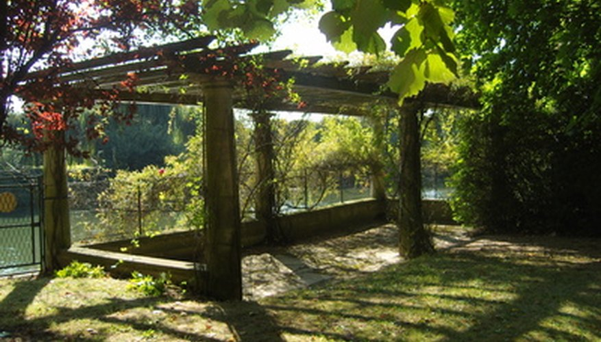 A pergola is a type of trellis that adds structure to a garden.