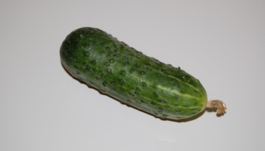Keep cucumber crops healthy.