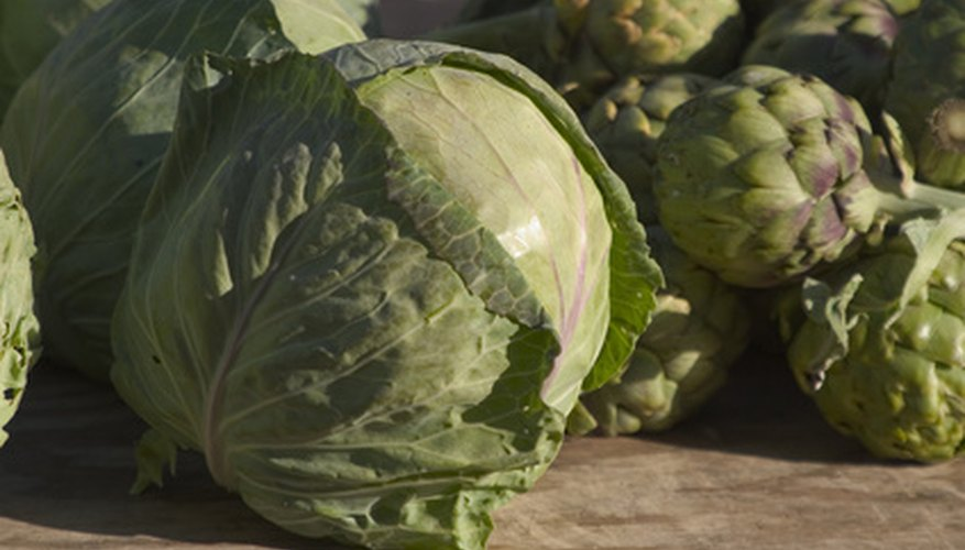 Lettuce and artichokes are popular cool season crops.