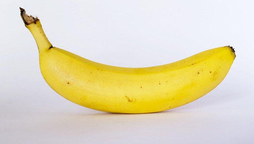 El plátano también forma parte de la dieta el elefante.