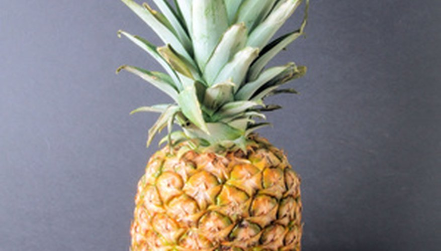 A plant can be grown from a pineapple.