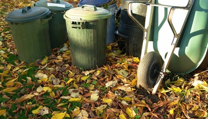 Fallen leaves are a good addition to a compost bin.