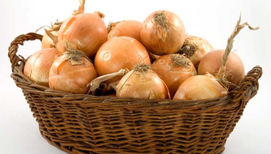 Onions require minimal care indoors.