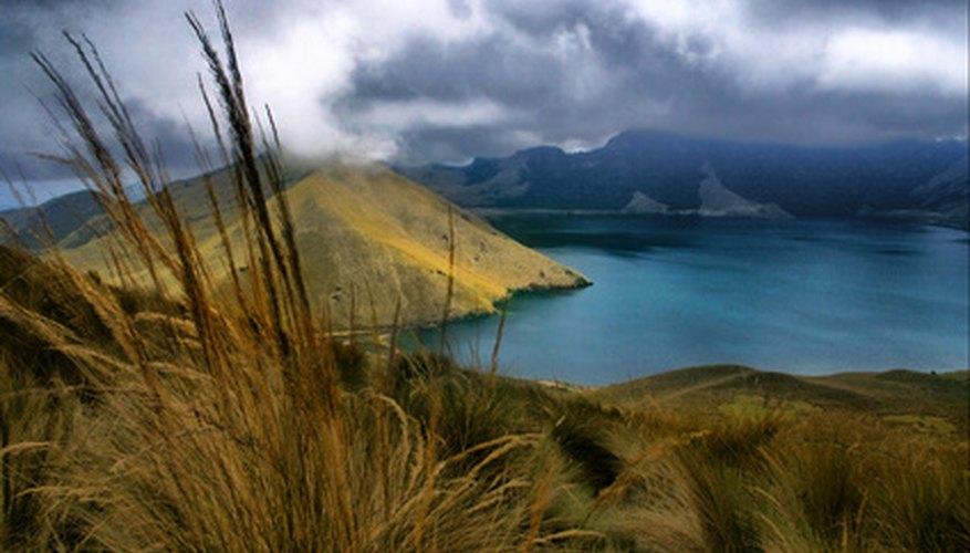 El ecosistema de páramo del Ecuador se encuentra en los Andes.