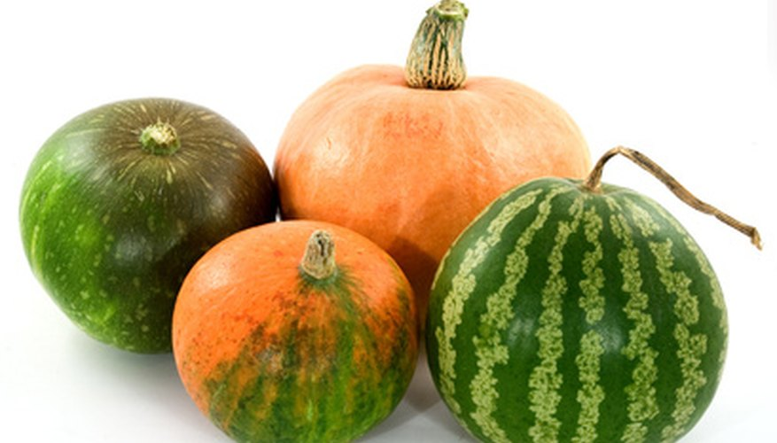 Pumpkins and melons are commonly grown in hills.