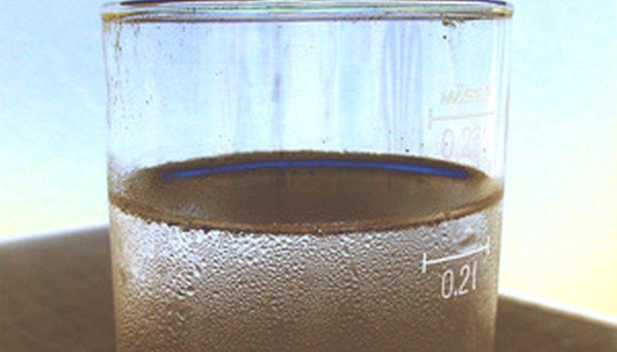 Con el tiempo, este vaso de agua podría convertirse en un ecosistema léntico.