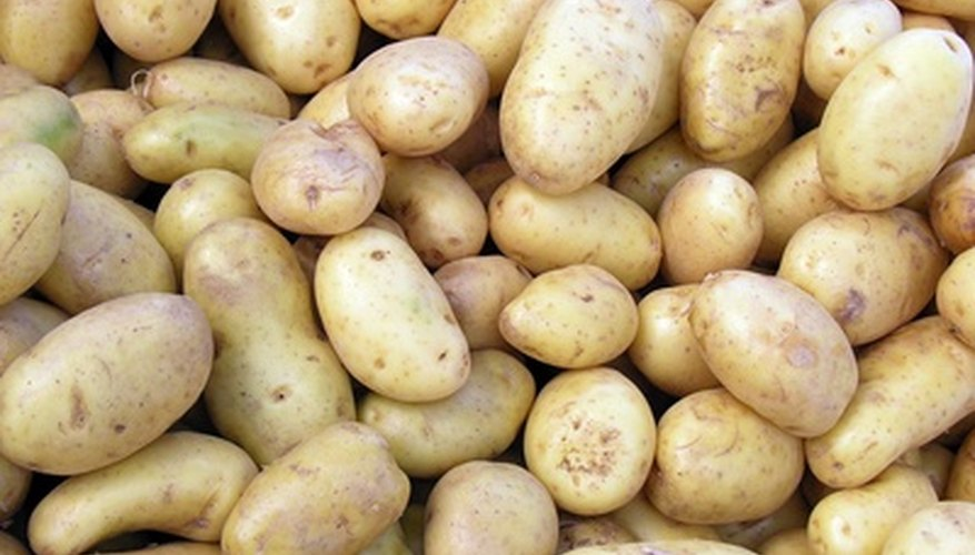 Cut seed potatoes into pieces with at least one eye each.