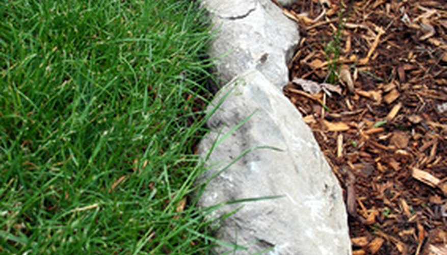Clean landscape rocks with mild soap to enhance their appearance.
