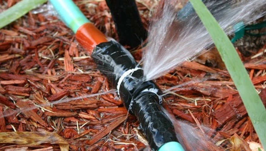 Mulches keep moisture at the plant's root zone.