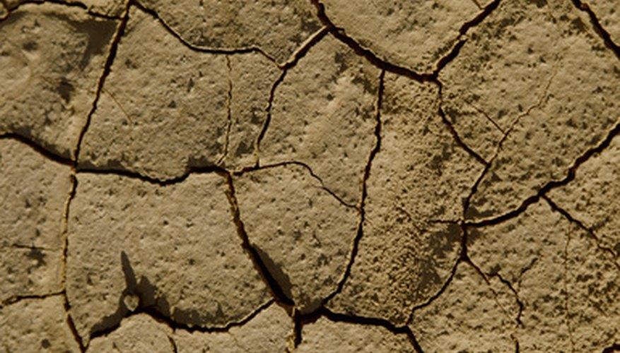 Un terreno muy alcalino puede ser hostil para las plantas.