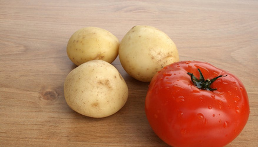 Tomatoes and potatoes can be grown together with grafting.